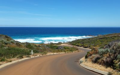 Of (kanga)roos and elephants, of backpackers and locals – thoughts from down-under!