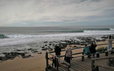 Six valuable lessons for an Oceaneers-style surf adventure to the one and only Jeffreys Bay